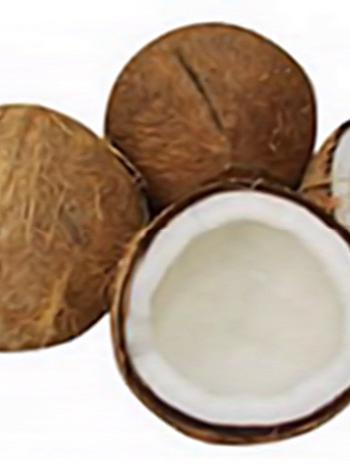 Comprar Cocos secos