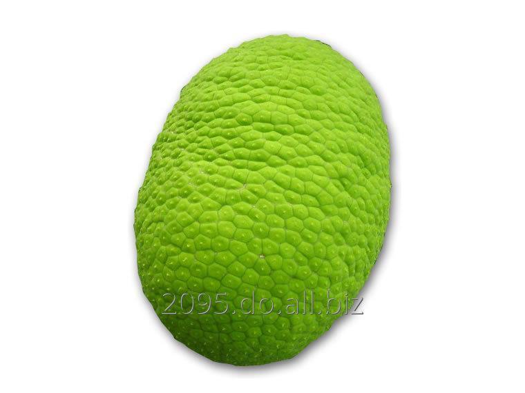 Comprar Castaño/ Breadfruit, CIF price