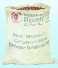 Cacao Hispaniola