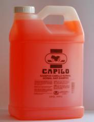 Shampoo Cabello Normal Capilo