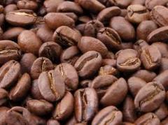 Cafe Ramírez Especial AA