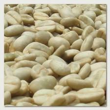 Café orgánico en pergamino y descascarado