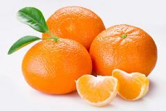 Mandarina /Citrus nobilis