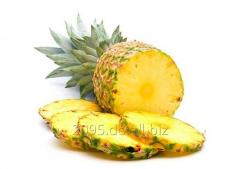 Piña / Pineapple, best CIF price