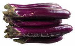 Berenjenas Chinas/ Chinese Eggplant