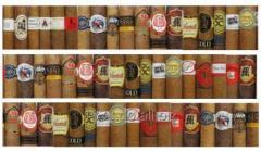 Cigarros Dominicanos variedad