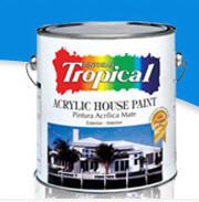 Pinturas Acrílicas - Acrylic House Paint