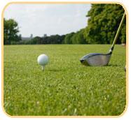 Pedido Campo de golf