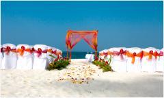 Organizacion de boda