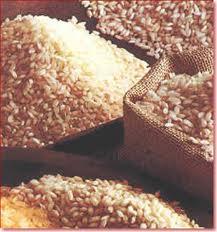 Sector arroz e invernaderos