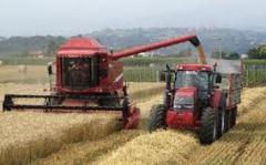 Asistencia en tecnología agropecuaria