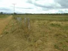 Desmonte y nivelación de terrenos