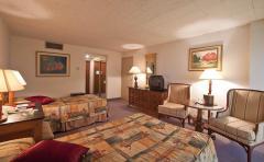 La habitacion Suite